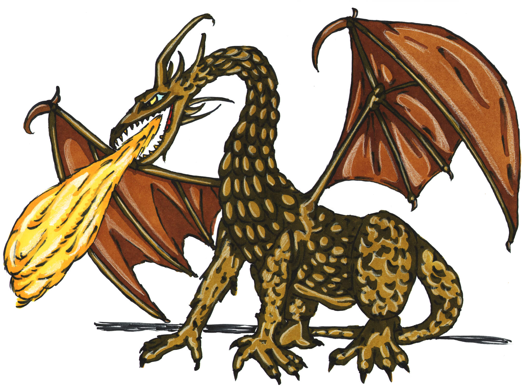 Xenosaurus Illustrations, Royalty-Free Vector Graphics & Clip Art - iStock