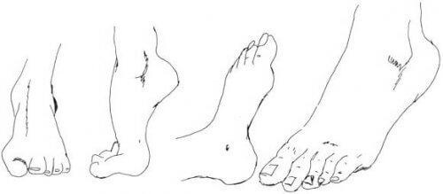 Fuß in verschiedenen Posen zeichnen