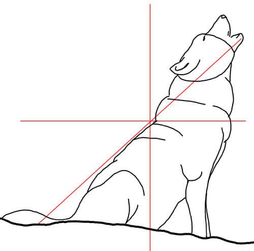 Wölfe und Wildhunde: Heulender Wolf Skizze