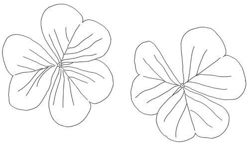 Kleeblatt Schritt für Schritt Anleitung Zeichnung