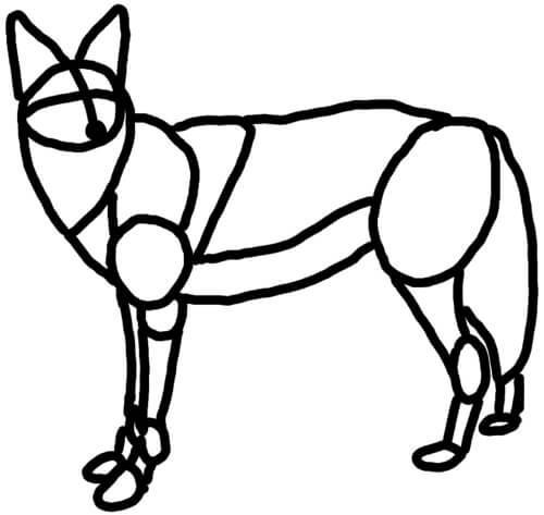 Kojote Skizze