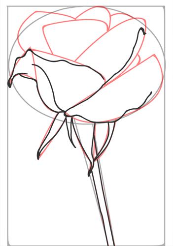 38 rosen zeichnen lernen schritt für schritt  besten