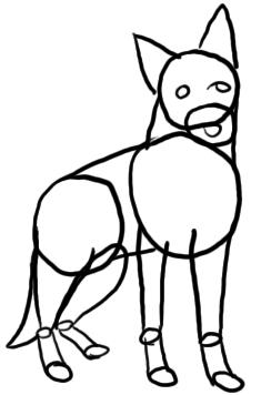 Schäferhund zeichnen - Schritt 1