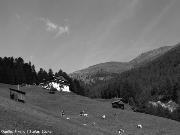 Beispielfoto Landschaft schwarzweiß