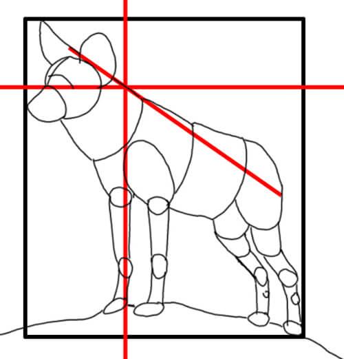 Wölfe und Wildhunde: Wildhund Skizze