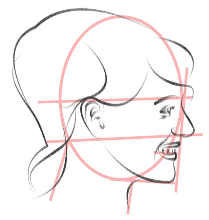Gesicht von der Seite zeichnen Hilfslinien und Zeichnung