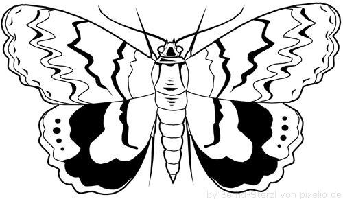 Flügel Beispielzeichnung 4