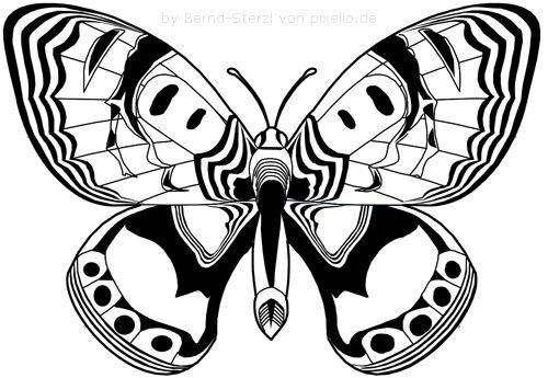 Schmetterlingsflügel Beispielzeichnung 7