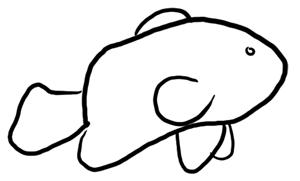 Clownfisch Grundskizze