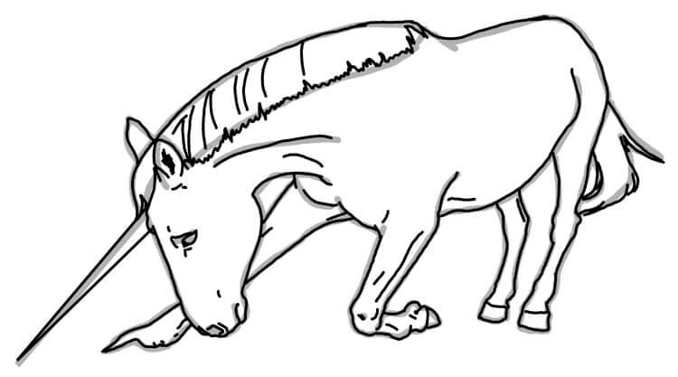 Knieendes Einhorn Zeichnentutorial Schritt 3