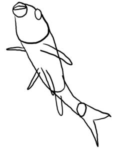 Koikarpfen schwimmt nach oben Grundformen
