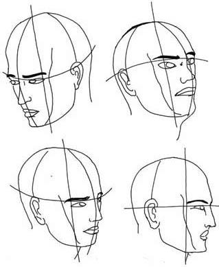Kopf von seitlich nach oben und unten geneigt - Gliederung und Aufbau