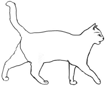 Laufende Katze von der Seite - Zeichnung