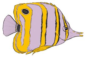 Pinzettenfisch Kolorierung