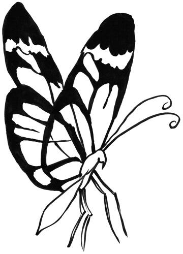 Schmetterling von der Seite gezeichnet