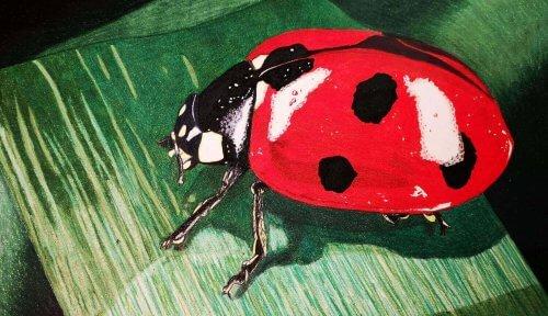 Marienkäfer mit Prismacolor Buntstiften malen