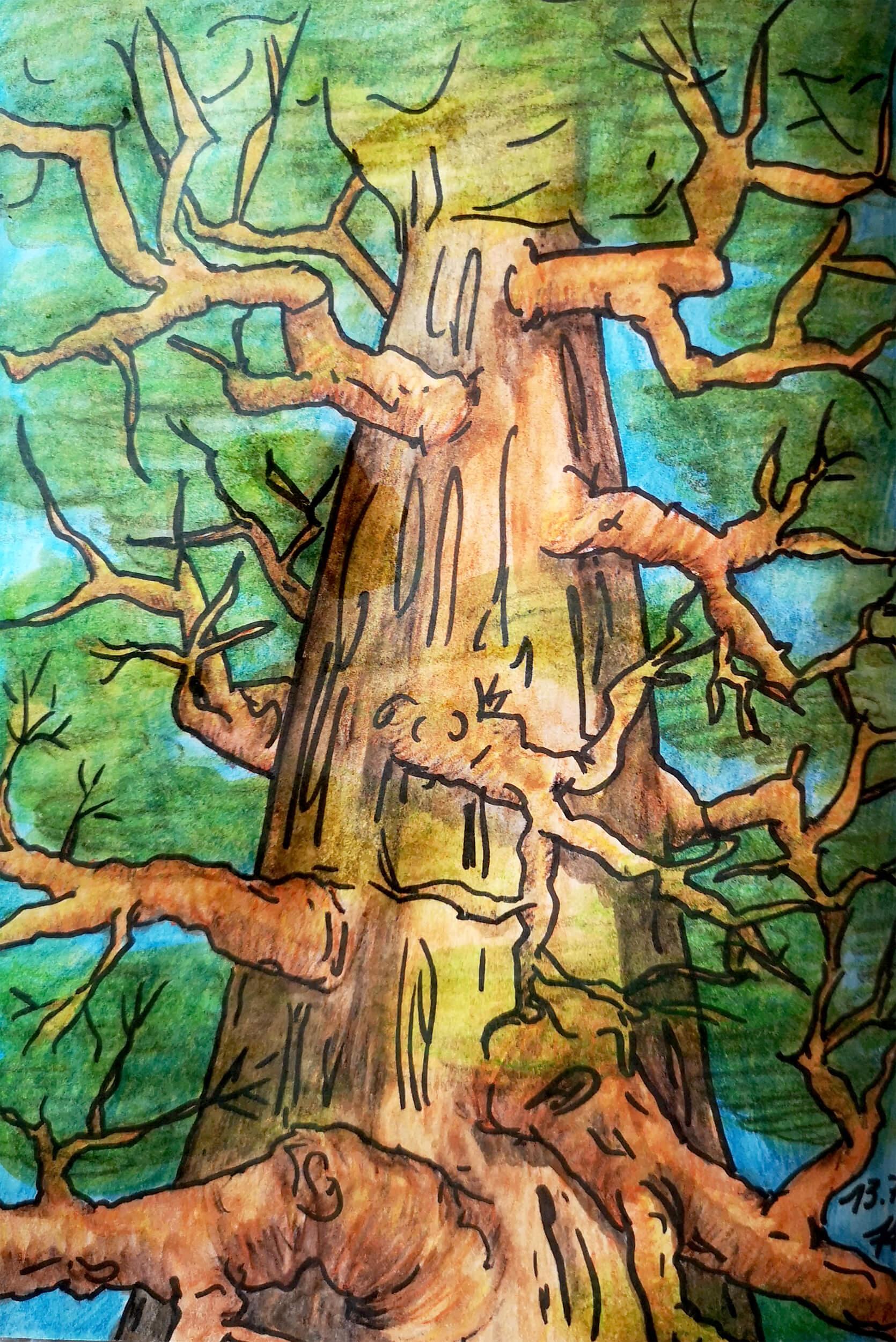 Mächtiger Baum aus der Untersichtperspektive