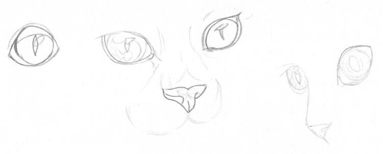 Katzenaugen Zeichnenbeispiele